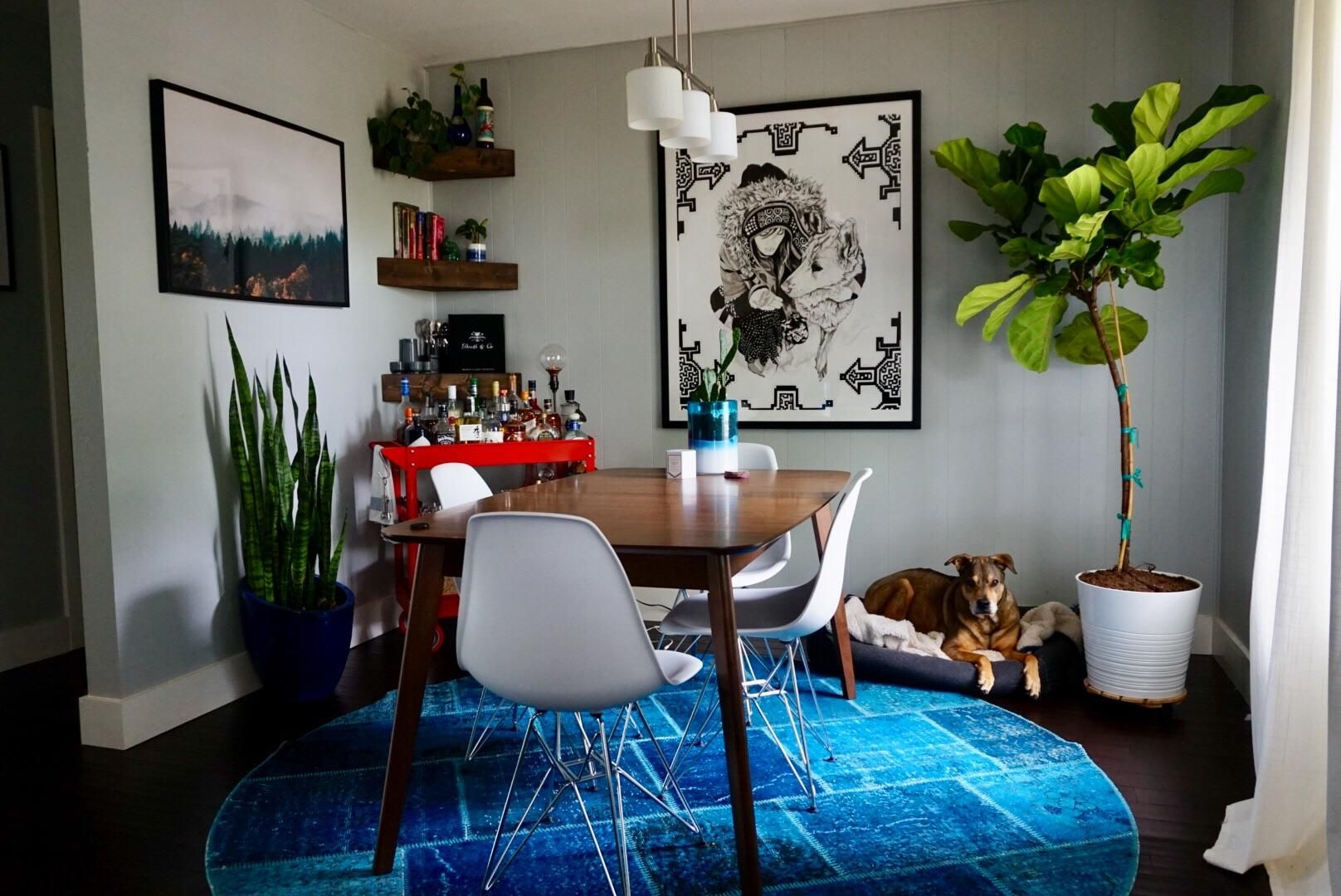 Why this got pinned That snake plant, round rug, bright
