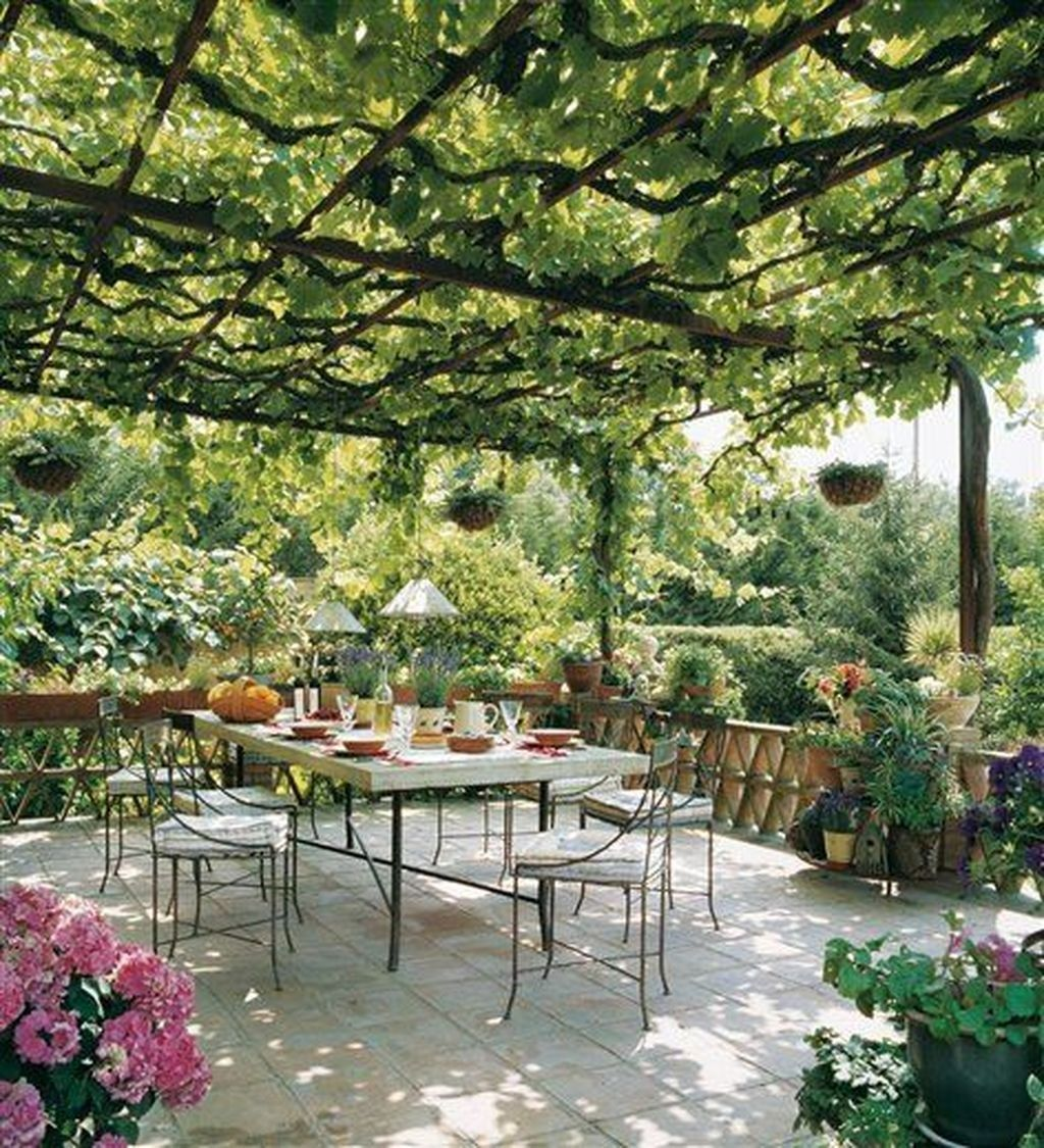 36 Inspirierende Weinrebeideen zur Verschönerung Ihres Gartens #pergolapatio