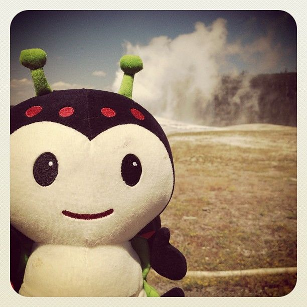 Play the Caravanning Kimochis contest for your chance to win a large Kimochis Character. Over the next few days we will post Bug photos from Bug's road trip. Name the geographic location each day for your chance to be entered to win. For example, if Bug were at The Golden Gate Bridge you would answer San Francisco, CA. First clue for today's photo is: Bug travelled from West to East leaving from Seattle, WA. Name the location in this photo.  (Taken with Instagram)