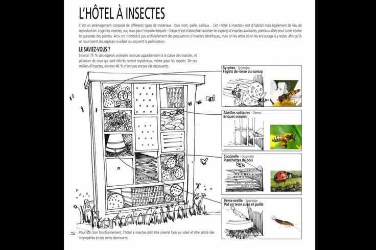 Hotel 0 insectes plan qwant recherche hotels insectes - Maison a insectes plan ...