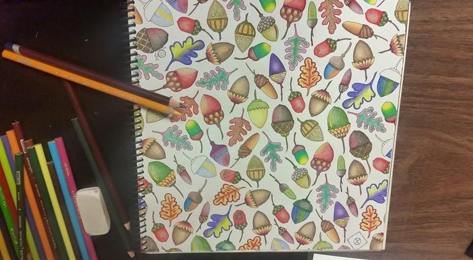 Johanna Basford Coloring Acorns Enchanted Forest