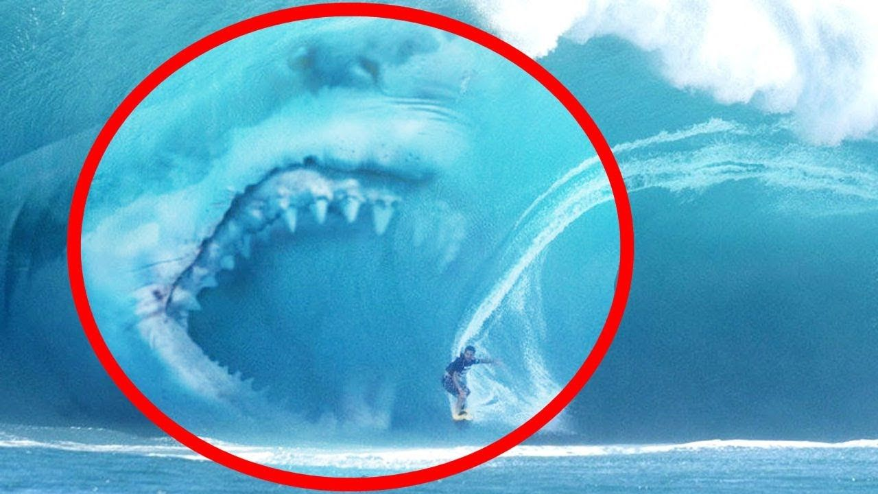5 MEGALODON CAUGHT ON CAMERA & SPOTTED IN REAL LIFE! https://youtu.be/PSZsiBmXae0 | Video Check ...