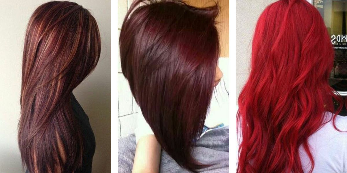 Dark Red Hair Color Chart  Best At Home Semi Permanent Hair Color