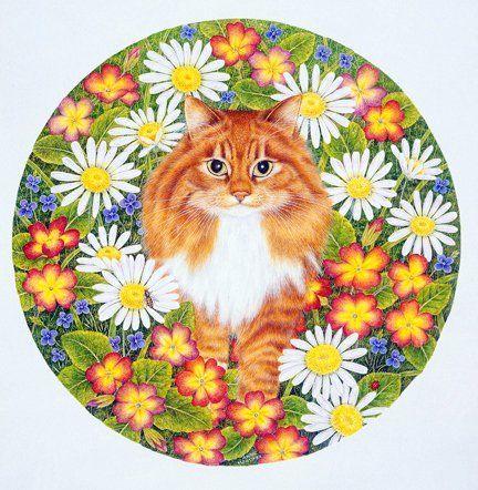 Кот в ромашках вышивка