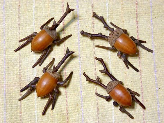 Wunderbare Deko aus Eicheln | Mein gewünschtes Zuhause - Bastelideen Kinder #insects