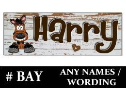 Stable Horse Name Pony Personalised Cartoon Sign Plaque Door Tack Room Yard