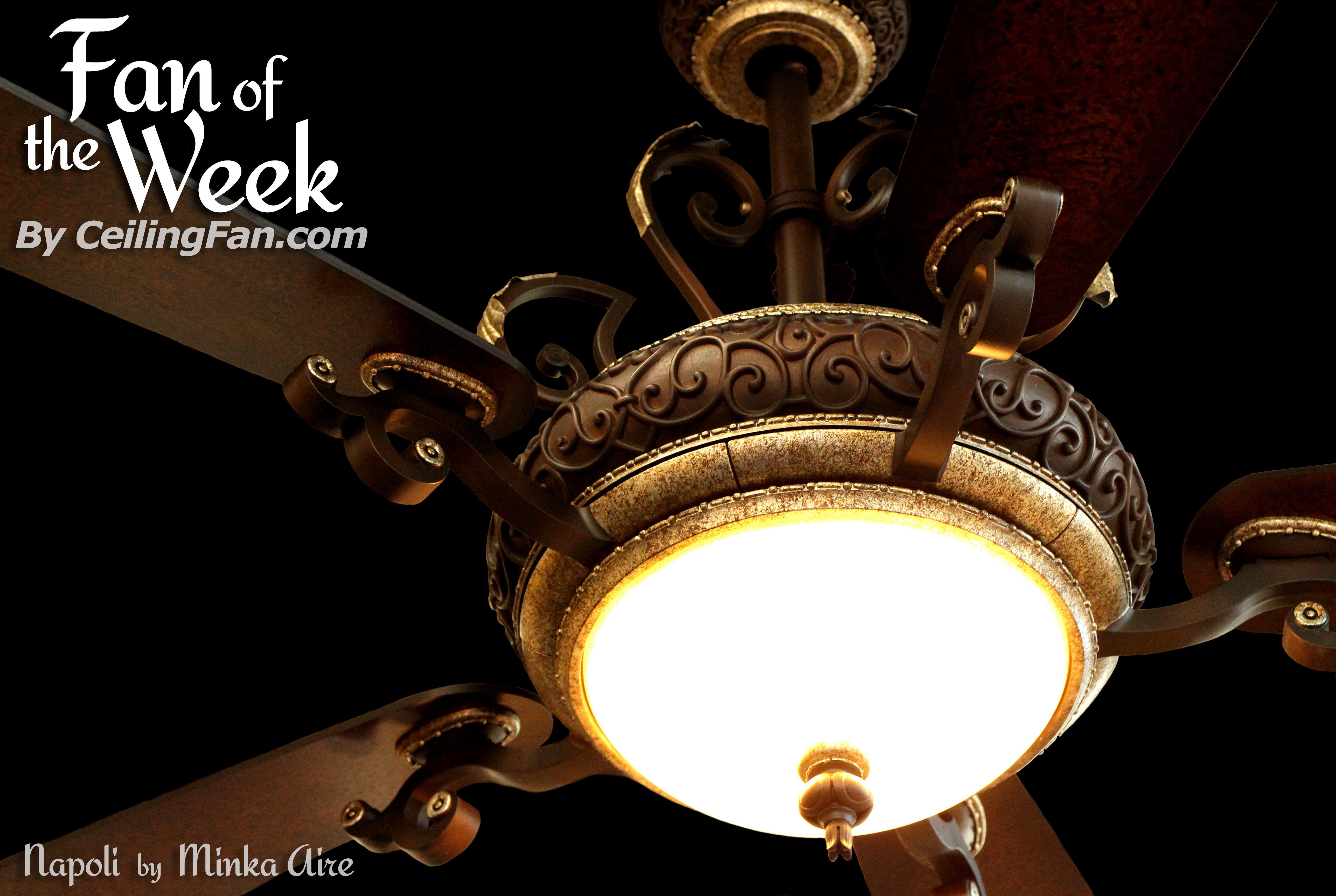 Pin By Ceilingfan Com On Ceiling Fan Of The Week Home Decor Ceiling Fan Ceiling Lights