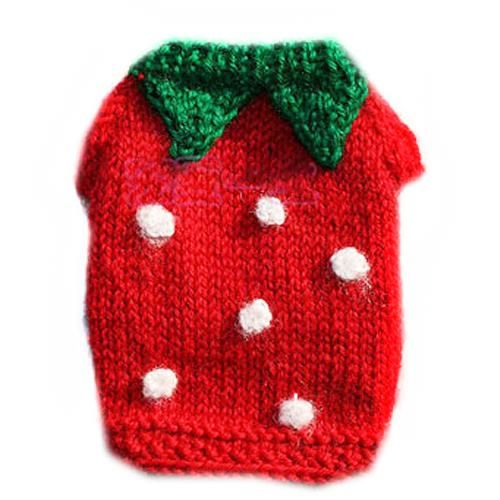 Corgi With A Hand knitted Dog Strawberry Sweater | Corgis ...