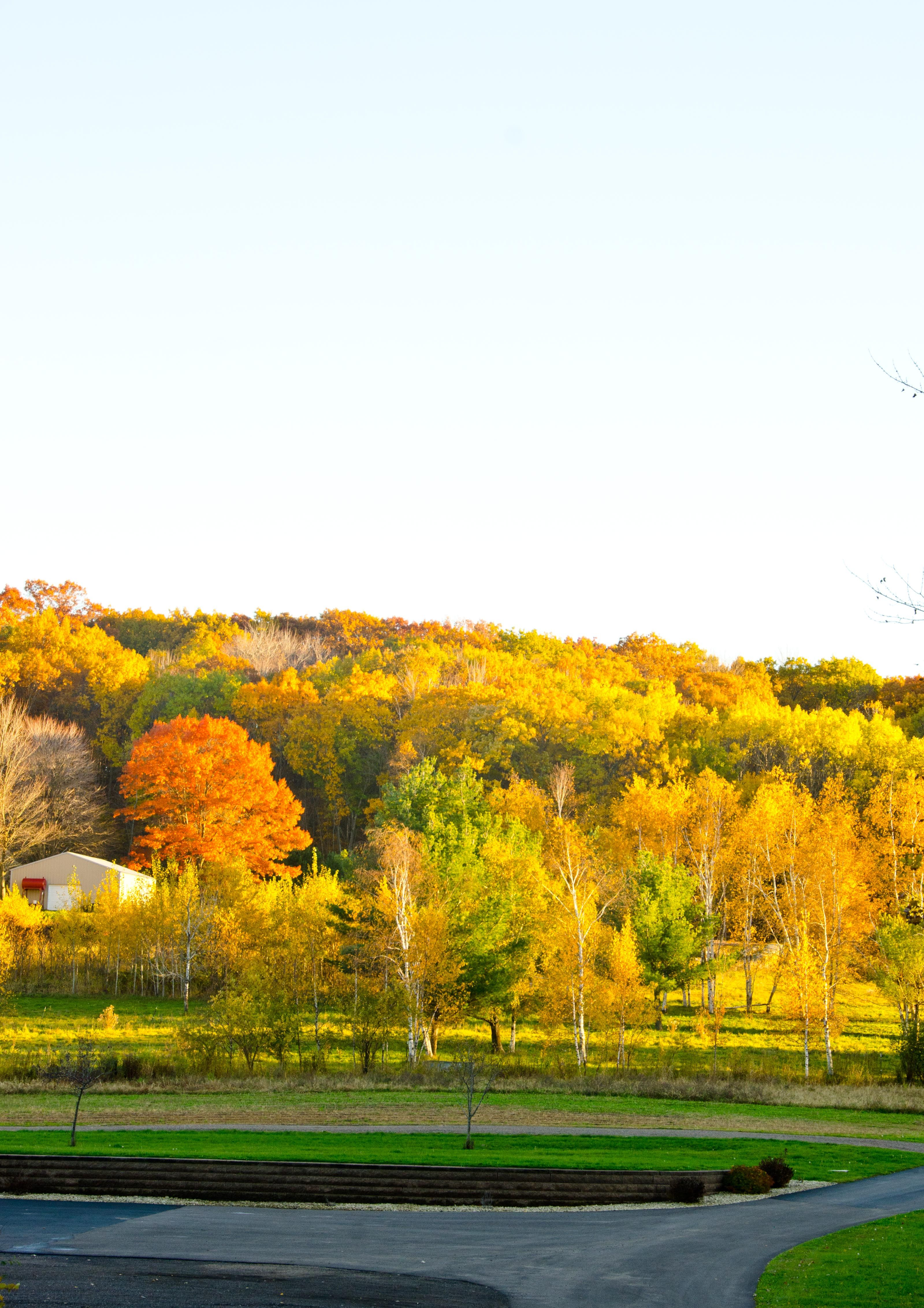 A beautiful outdoor wedding venue at Dixon's Apple Orchard