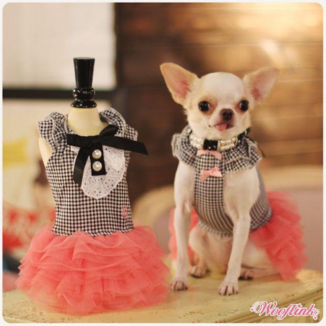 Wooflink Hip Designer Dog Clothes Dress Girl Dog Clothes Dog