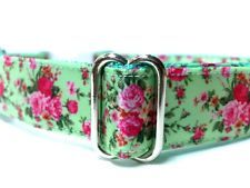 Adjustable Dog Collar-Colorful Roses on Mint Green- Small, Medium or Large