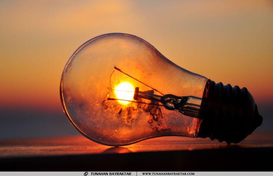 sunbulbs