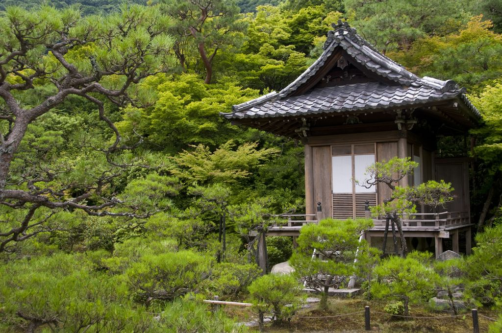 Tea Garden Okochi Sanso, Japan Japanese garden, Garden
