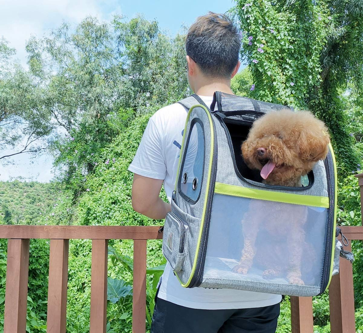 Pecute Dog Carrier Backpack Pet Backpack With Ventilated Breathable Mesh Portable Pet Expandable Bag For In 2020 Dog Backpack Carrier Pet Backpack Pet Backpack Carrier