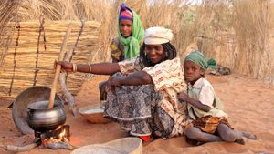 Northern Nigeria's grain trade, which supplies almost half of the Sahel's cereals, has slowed severely, while abnormally high prices of staple grains across the Sahel are causing serious food security concerns in this chronically vulnerable region.