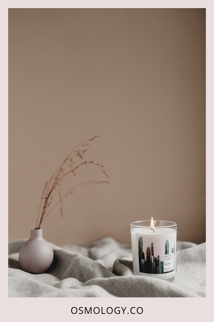 Cactus Scented Candle by Maison La Bougie #scentedcandles