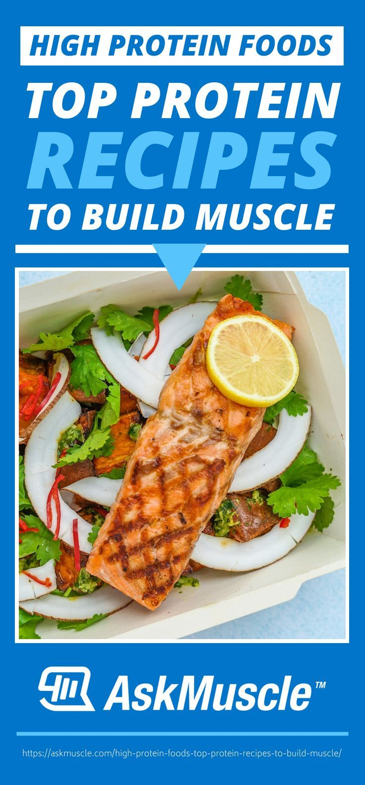 High Protein Foods Top Protein Recipes To Build Muscle