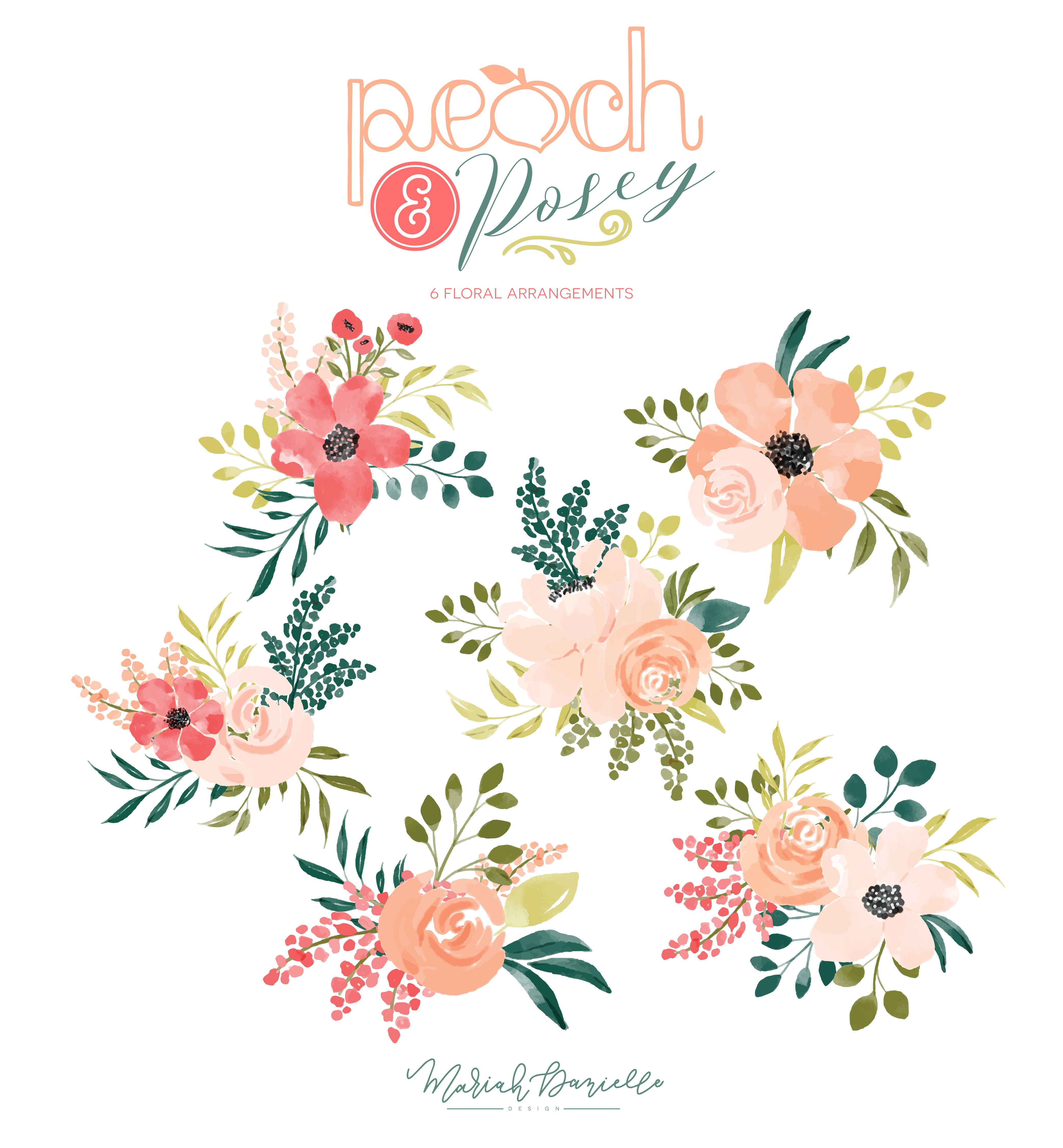 Peach Posey Floral Bouquet Set Illustrations Hand Drawn