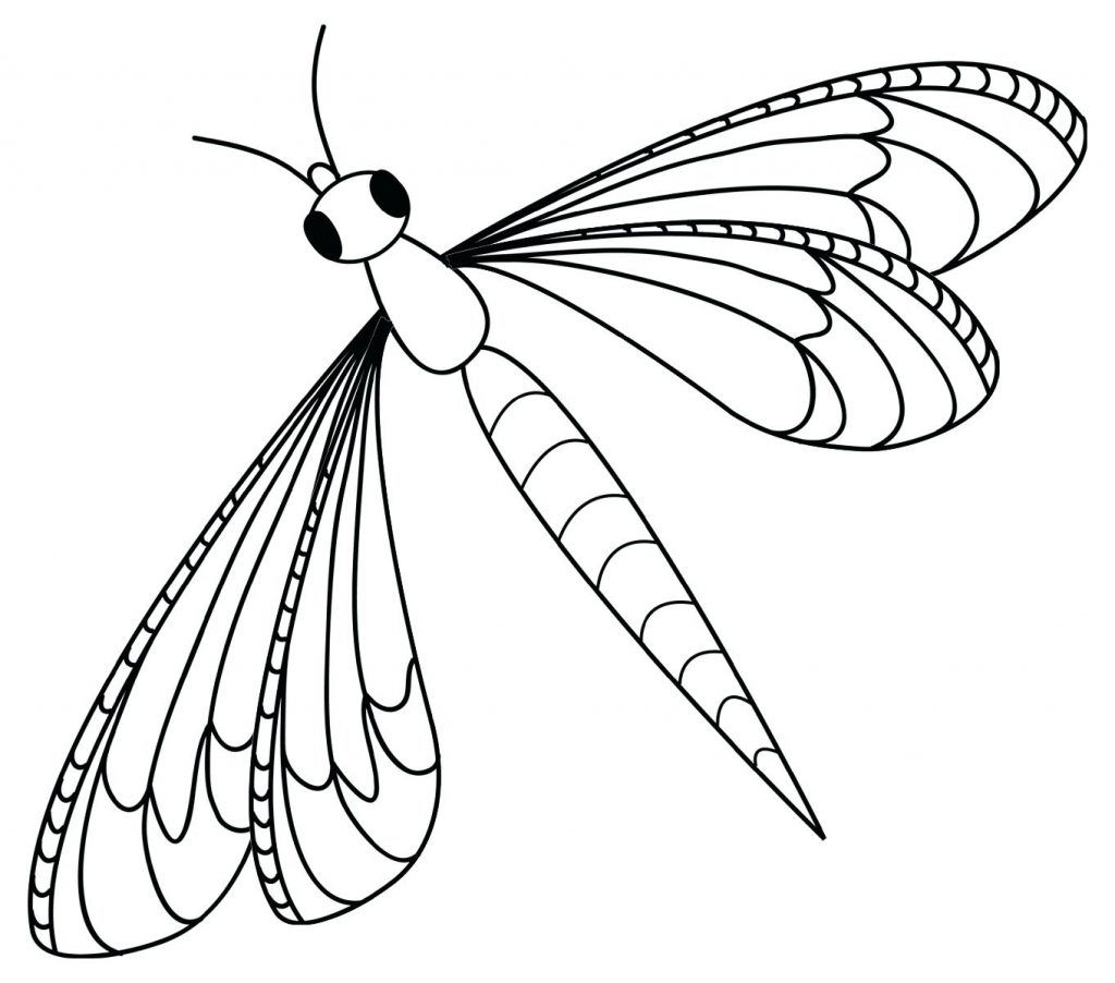 Insect Coloring Pages Best Coloring Pages For Kids Insect Coloring Pages Dragonfly Images Butterfly Coloring Page