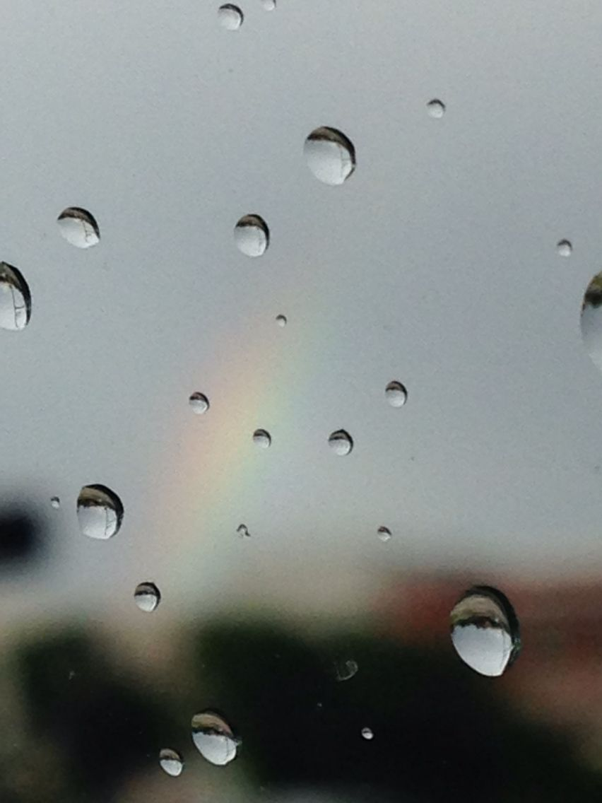 Meant to get a picture of the rainbow but I guess this will work to