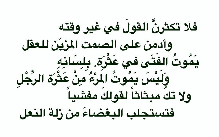 قيل في الصمت علي بن أبي طالب رضي الله عنه Cool Words Words Story Quotes