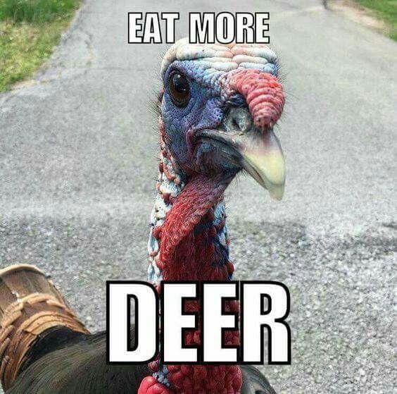 When it's turkey season