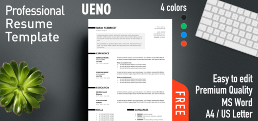 Ueno  Free Professional Resume Template For Ms Word With A Bright