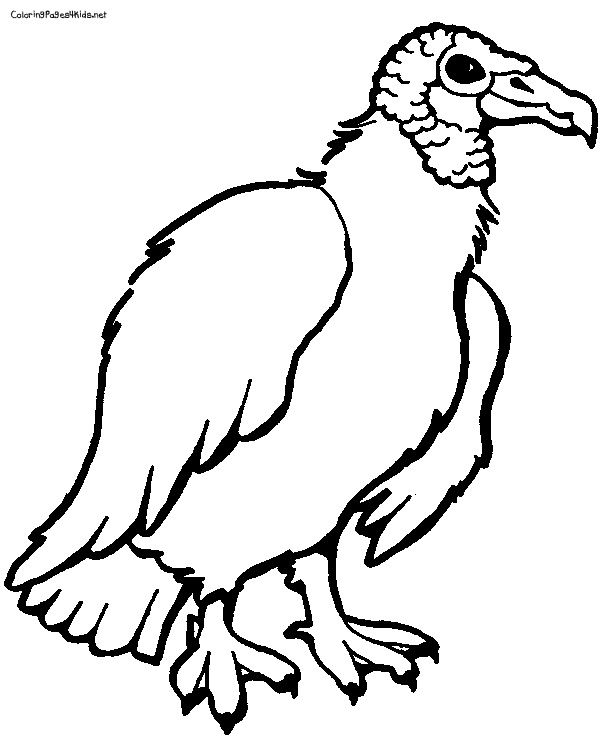 Vulture Coloring Pages Coloring Pages Cartoon Coloring Pages Spiderman Coloring