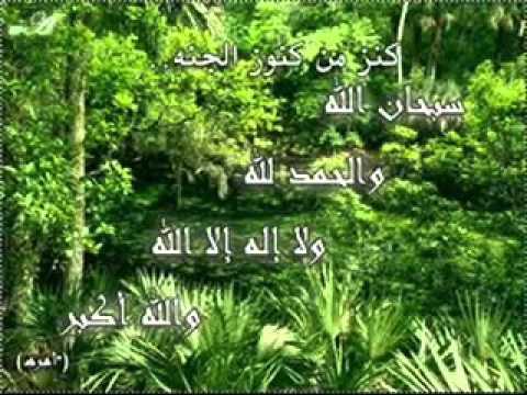 178 آيات تفريج الهم والغم رووووعــه سعد الغامدي Youtube Herbs Youtube Plants
