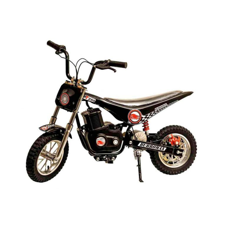 Top 10 Best Electric Dirt Bike For Kids In 2020 Review Kids