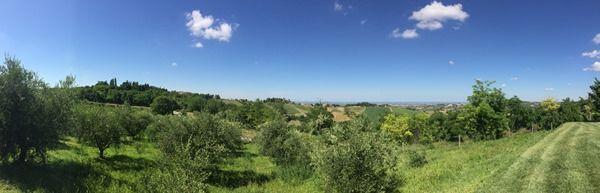 Ausblick vom Weingut Neri auf die Emilia-Romagna – ein italienischer Traum.