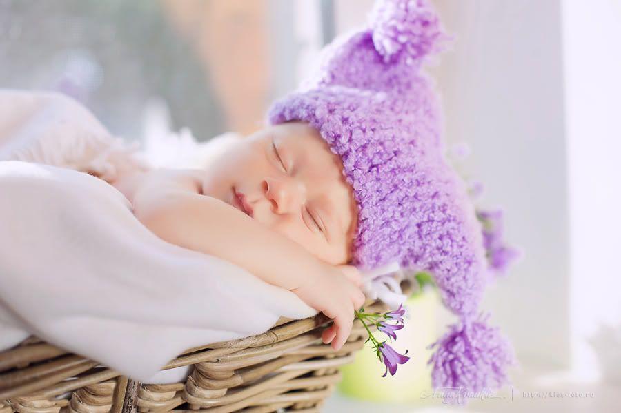 Ребетенок на окошке, 20 дней. (с изображениями ...