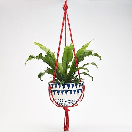 Mozi S Ceramic Hanging Planter In The Village Collection Garden