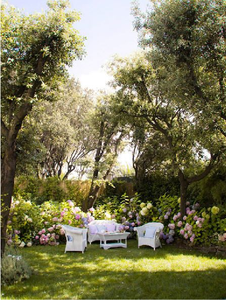 Our garden 'lounge area' looks so cosy and comfy and peaceful............
