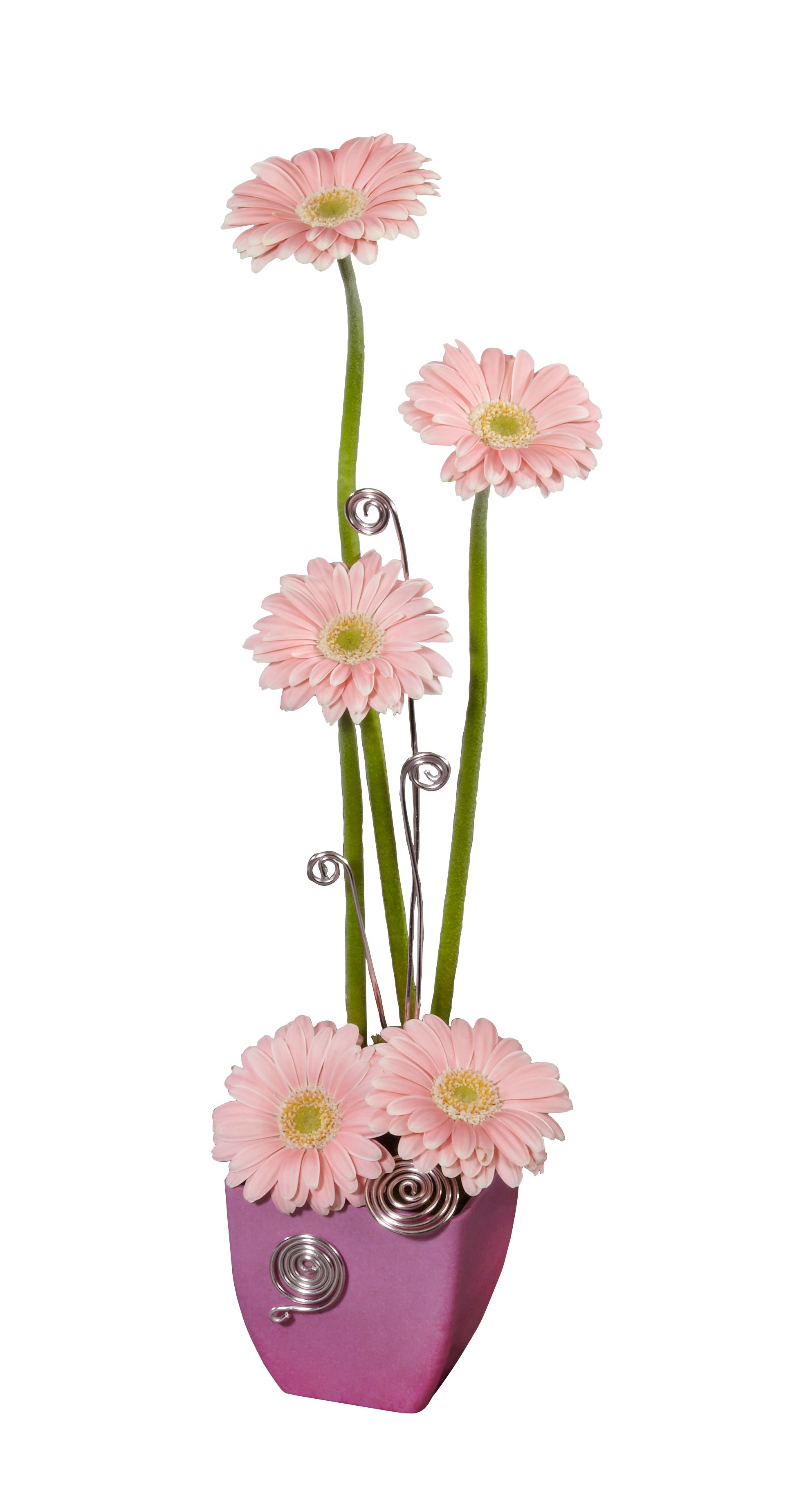 Simply done with Gerberas and Aluminum Wire | flowers | Pinterest ...