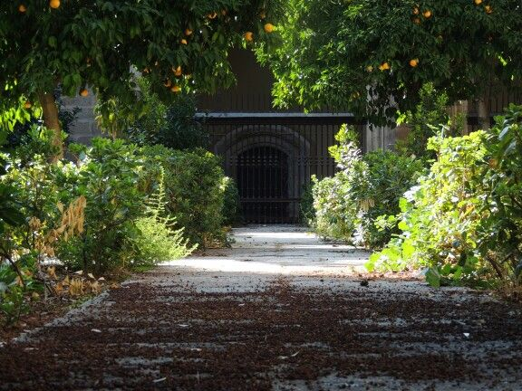 Jardim da Catedral