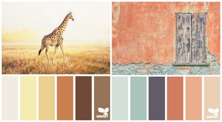 couleur cuisine palette couleurs chaudes orange terre cuite 750 414 kitchen. Black Bedroom Furniture Sets. Home Design Ideas