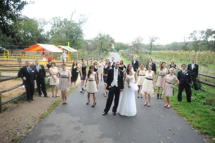 Our Very Large Wedding Party On The Farm Queens County Museum