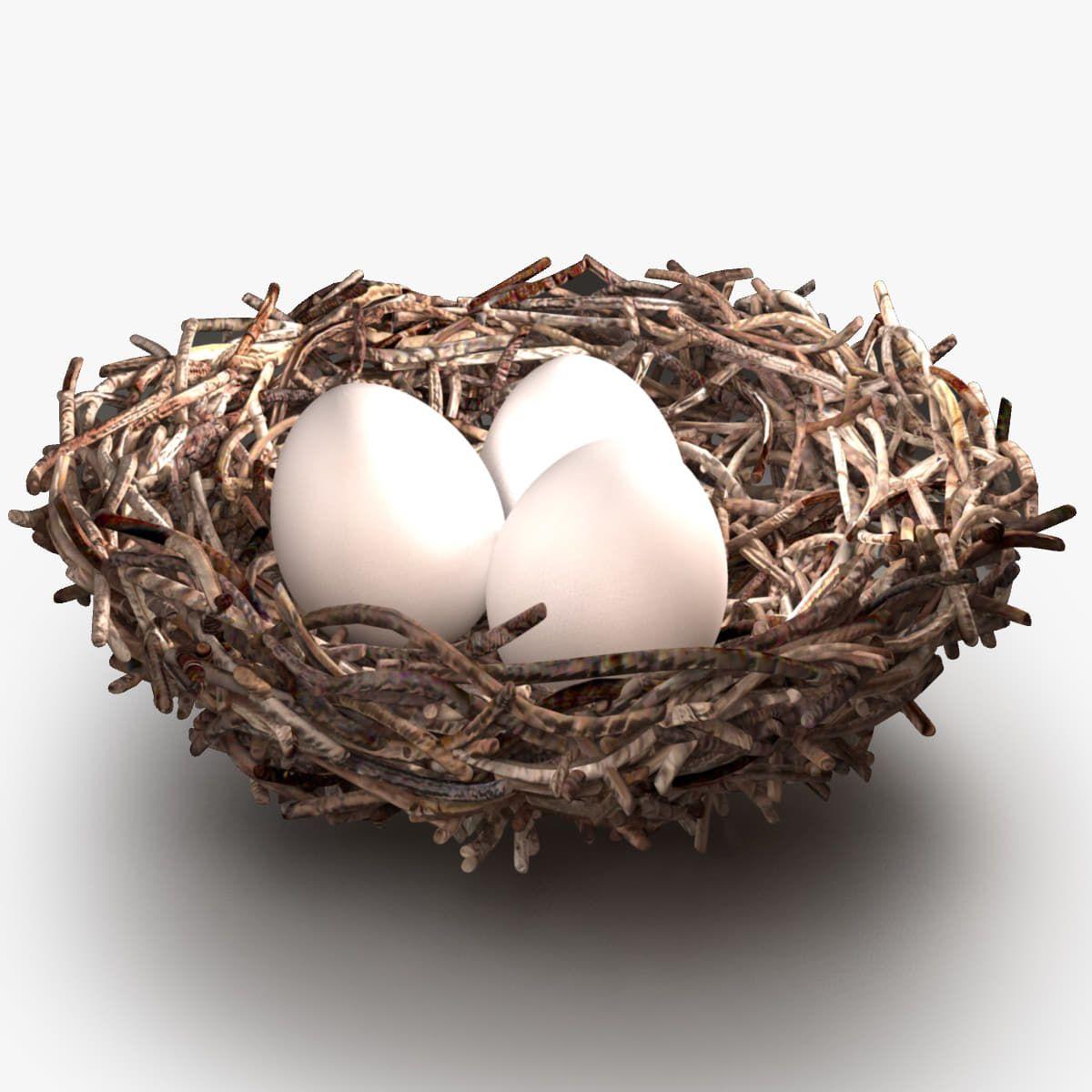 Bird Nest Max - 3D Model | 3D-Modeling | Pinterest | Nest, 3d and Bird