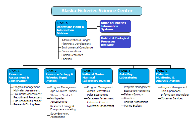 Science Center Organizational Structure  Org Chart Examples