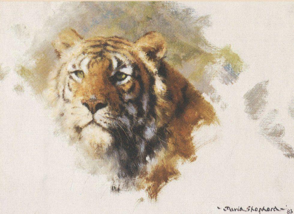 David Shepherd Big Cats