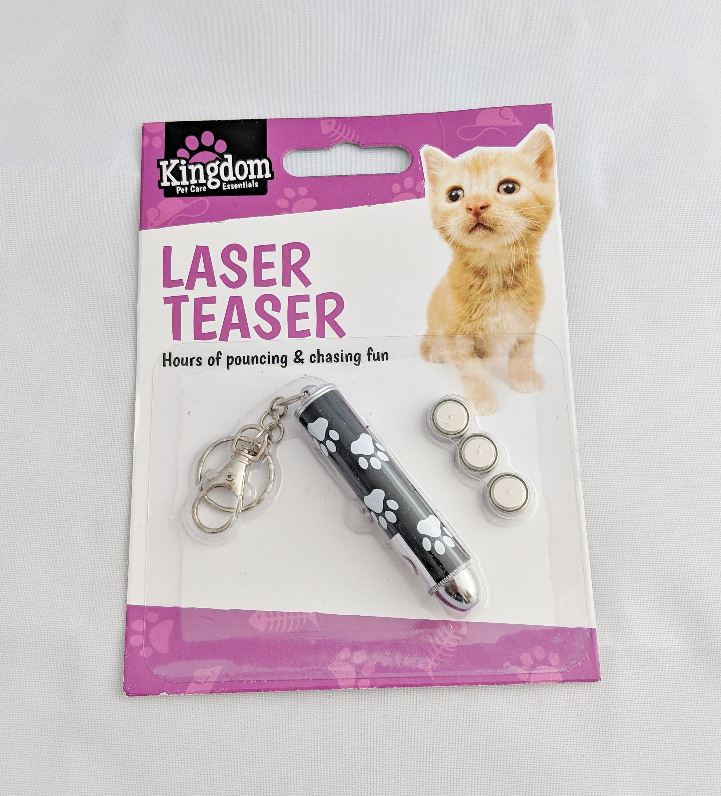 Cat Play Cat LED Laser Pointer Toy With Bright Fish Animation For Endless Fun