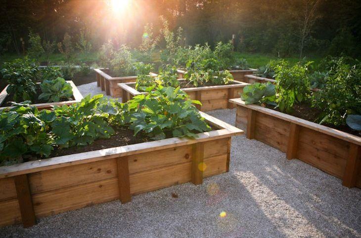 Jardinière en bois, métal, béton ou terre cuite- laquelle choisir ...