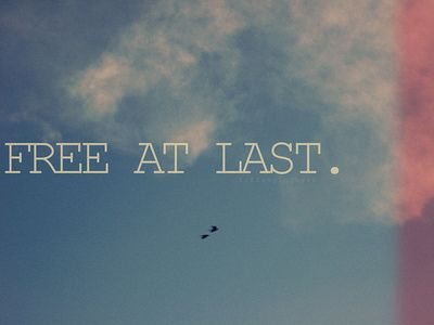 freedom quotes and sayings | 201/365: Free at last. (by Tiffany Nguyen )