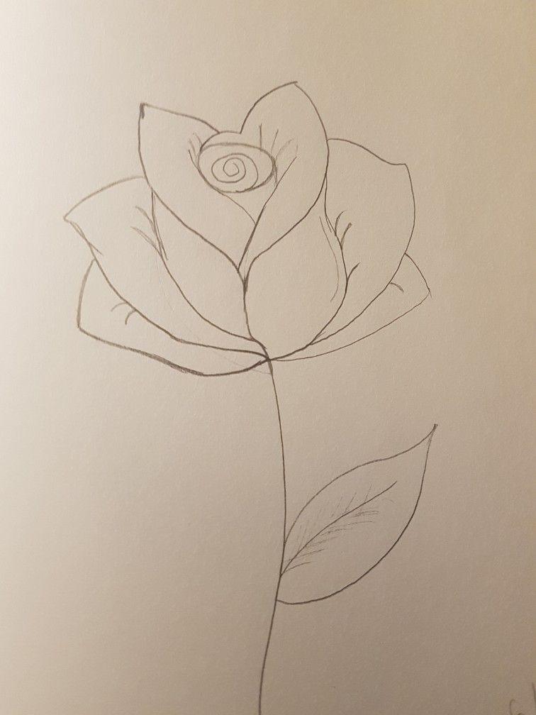 Rose Leaf Drawing : drawing, #rose, #flower, #leaf, #stem, #plant, #pencil, #drawings, #doodle, #easy, #simple, @blackpearlz, Flower, Drawings,, Drawing,, Canvas