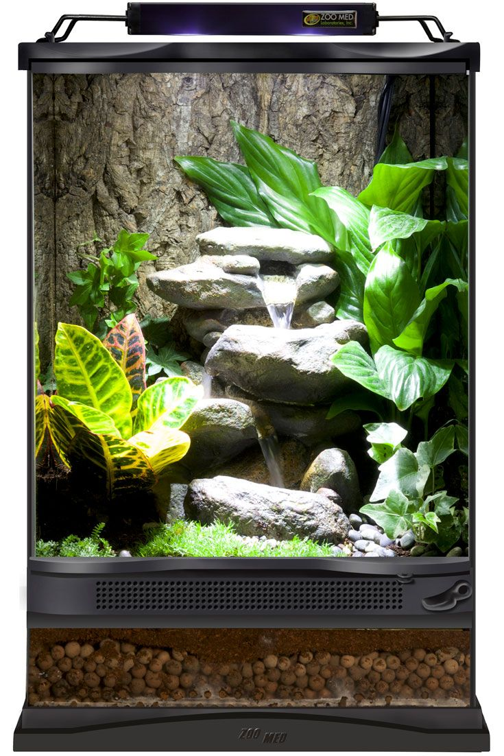 Diy This 12 Quot X12 Quot X18 Quot Zoo Med Terrarium With A Layer Of