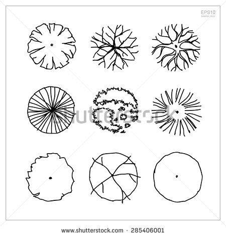stock vector set of tree plan symbols for use in architectural