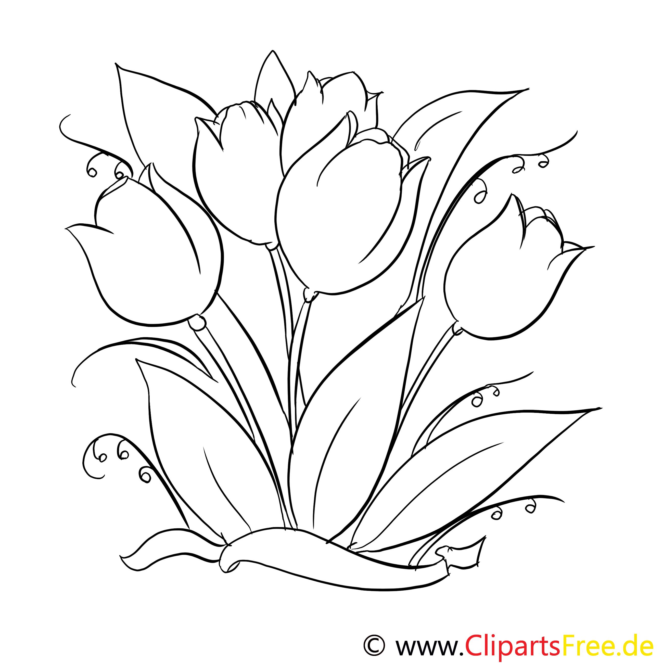 Malvorlage Von Tulpe Zum Ausdrucken