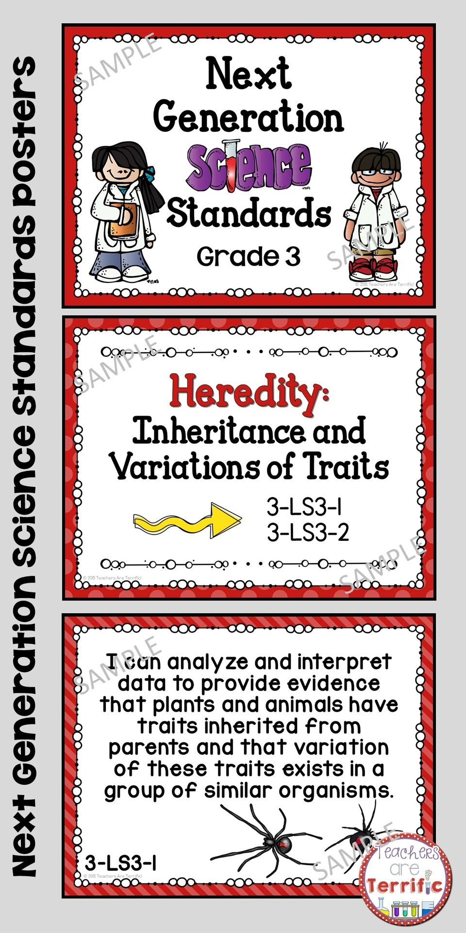 Here S Another Way To Display These Posters These Are Next Generation Science Standard Next Generation Science Standards Science Standards Third Grade Science