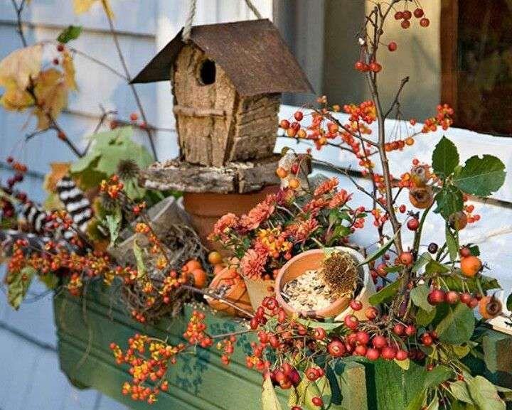Decorazione Finestre Autunno : Decorazioni autunnali per finestre gardening